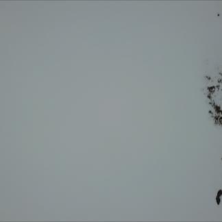 Snow and rocks Dash Zenith